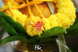 indianwedding_bestiankelly_ds005